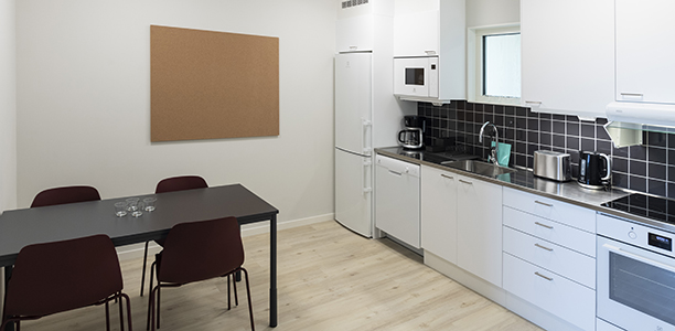 Shared 2 bedroom apartment - Common kitchen